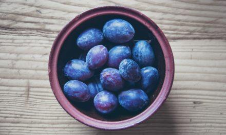 Ive blommetræ – En blommesort med stabilt frugtudbytte