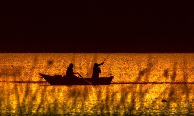 Få råd til den bedst mulige fisketur