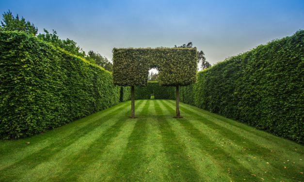 Sådan finder du den rette færdighæk til din have