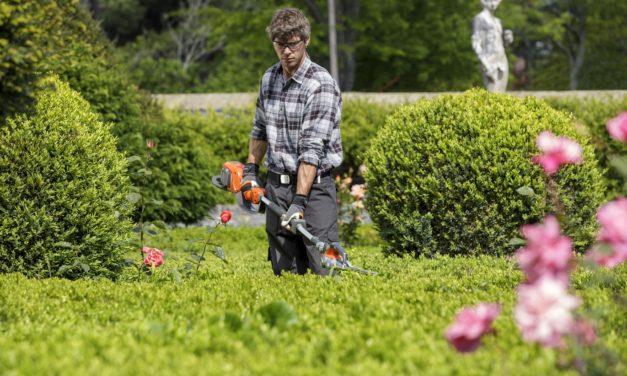 Skab privatliv i haven med færdigbuske