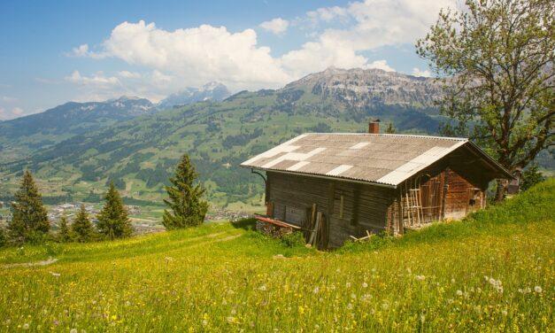 Sådan kan du bygge din egen shelter i haven