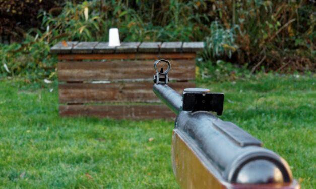 Sådan gør du havefesten sjovere med et luftgevær