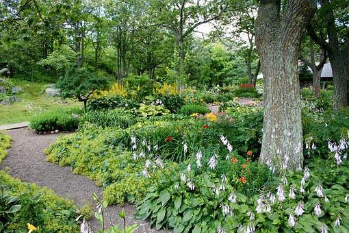 Anlæg af have