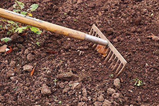 At anlægge en have