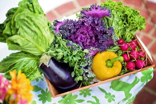 Grøntsager fra haven