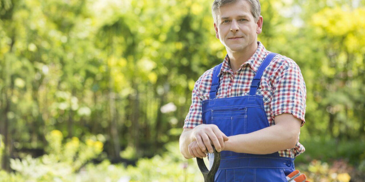Fire gode grunde til at hyre en anlægsgartner