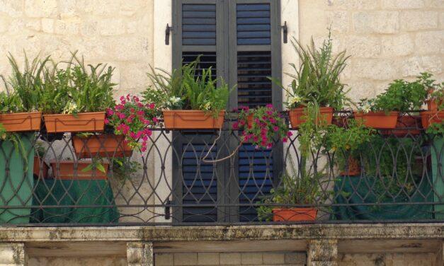 Skab en smuk baghave på din altan