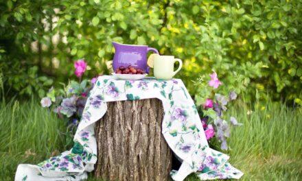 Oplev naturen i din have og på din rejse