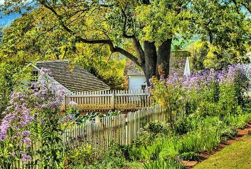 Blomstrende have