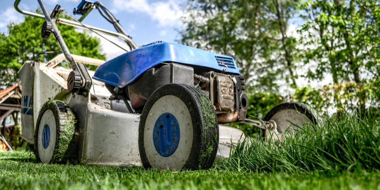 Glem alt om at hygge dig i haven, uden arbejdsløshedsforsikring