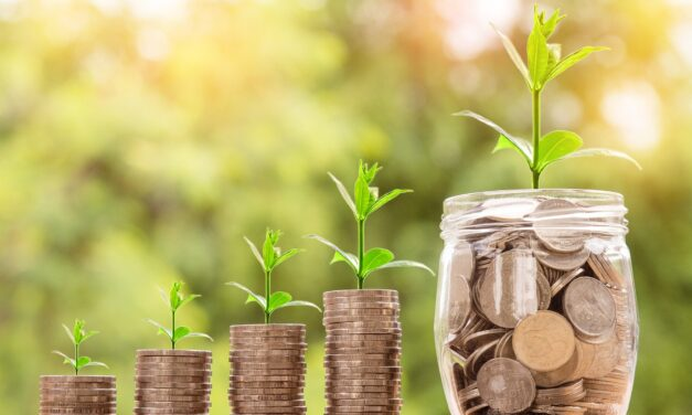 Realiser dine havedrømme ved at låne penge
