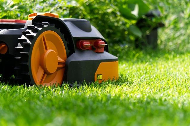 Sådan finder du den rette plæneklipper til din have!