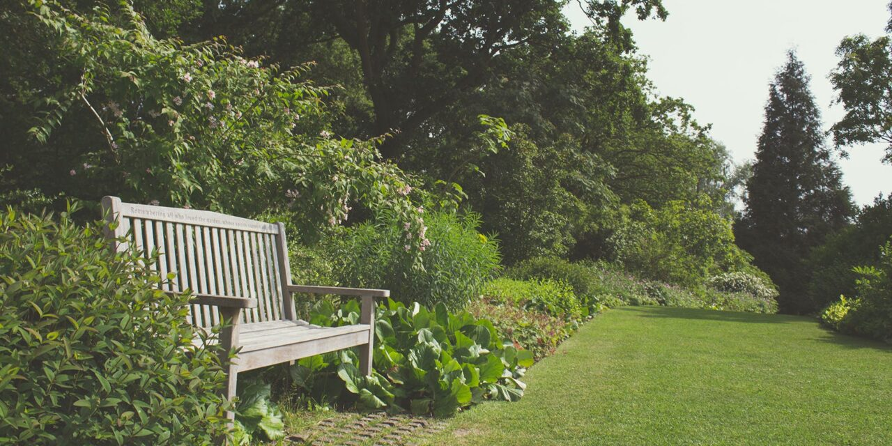 3 gode råd til haveindretning