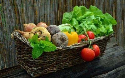 Dyrk dine egne grøntsager og frugter til din sunde livsstil