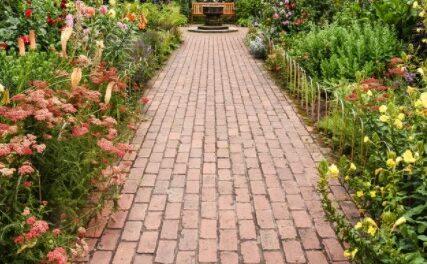 Gør haven sommerklar med udendørsplanter