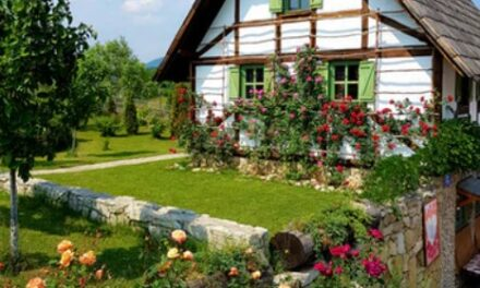 Sådan skaber du synergi mellem din have og dit hus
